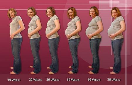 Как не сильно поправиться во время беременности